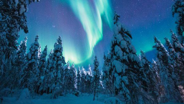 Visiter la Laponie, une idée de voyage vraiment pas comme les autres